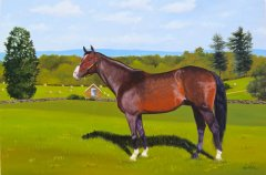 Equine_Painting_commission_800.jpg
